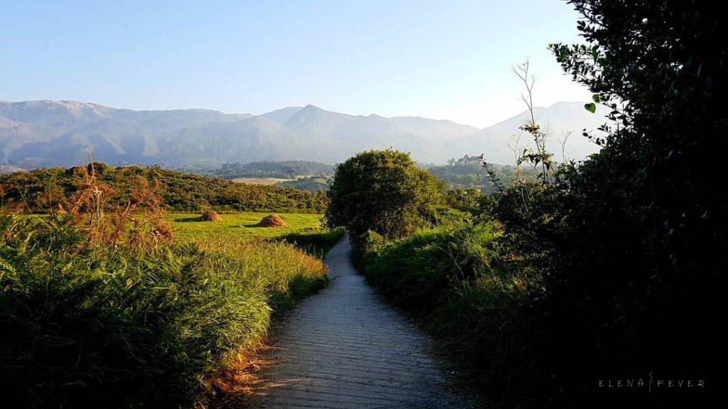 Foto montañas de Andrin Elena-Fever